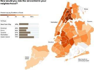 New Yorkers Assess Their City: Rats (screenshot)